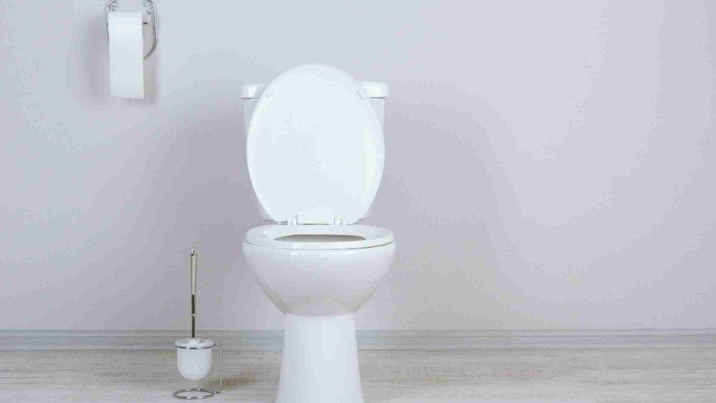 toilet plumbers